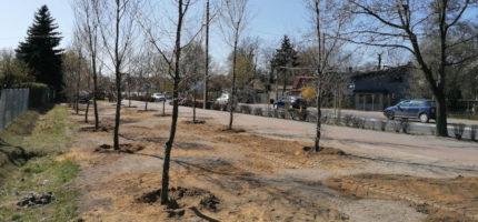 W Milanówku powstaje minipark