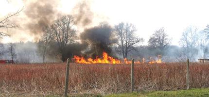 Cztery pożary traw w regionie