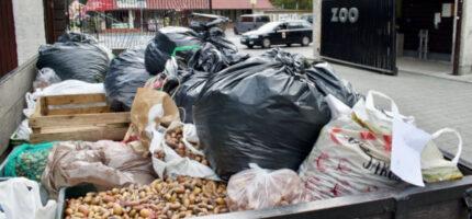 Owocna zbiórka przysmaków dla podopiecznych warszawskiego ZOO [FOTO]
